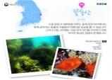 경북 수중레포츠 활성화 방안 모색을 위한 간담회