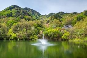 구미시, 옥성 자연휴양림 6월 1일부터 운영 재개