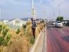 고령 다산면, 주요도로변 풀베기작업 환경정비