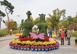 달성군 국화전시회, 국향이 가을의 정취를 느끼게 한다.