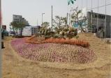 성주읍, 새마을공원 관목과 꽃의 조화로운 명품 공원으로 거듭~