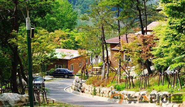 옥성자연휴양림 6월 1일부터 운영재개2.jpg