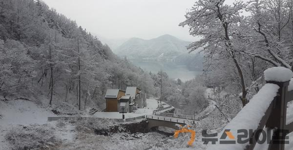산림과 기획보도-사진자료(3).jpg